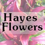 Hayes Flowers Bath PA